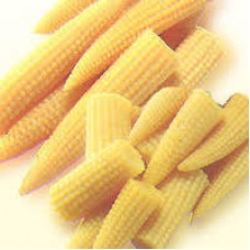Baby Corn 1 PACKET